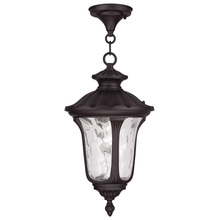Livex Lighting 7854-07 - 1 Light Bronze Chain Lantern